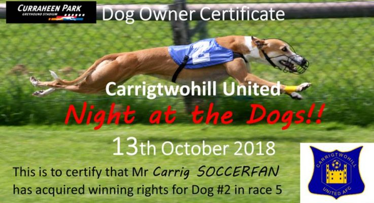 Why Not Become A Dog Owner for our night at the dogs
