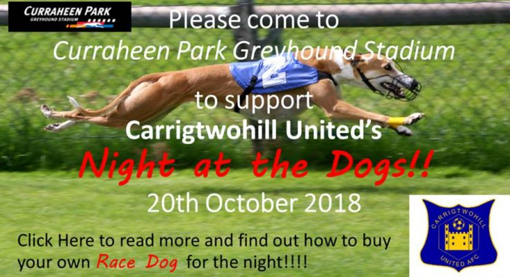 A night at the dogs October 13th Curraheen Dog Track